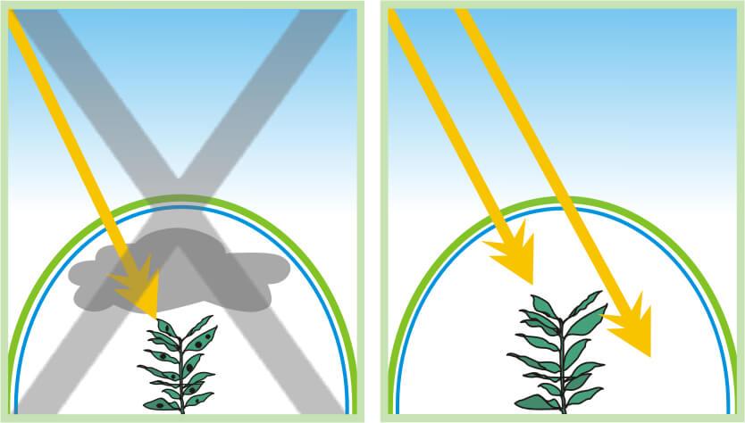 αντιομιχλικα φυλλα θερμοκηπίου